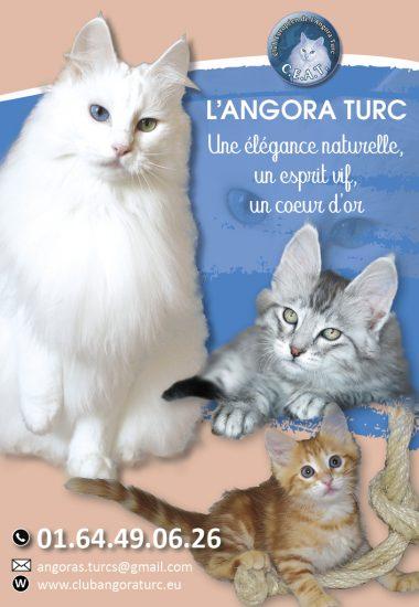 ANGORA TURC_1_4-page2